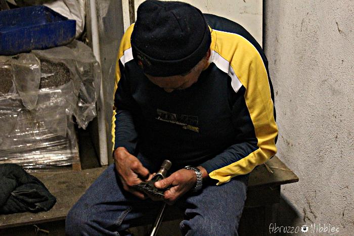 Un tosatore maori mentre prepara l'attrezzatura